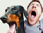 man and his dog yawning at the same time
